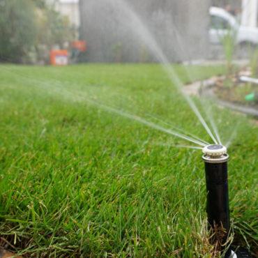 Rasenpflege Bewässerung